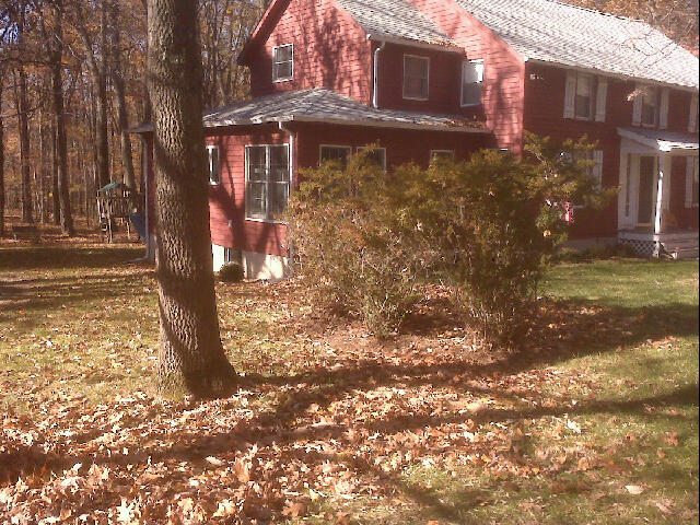 Before Raking
